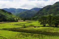Пастырский район Cumbria Англия озера мира Стоковые Изображения RF