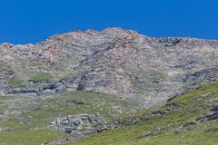 Пасущ стада овец высоко в горах Стоковое Фото