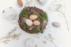 Пасхальное яйцо в гнезде на деревенских деревянных планках Стоковая Фотография RF