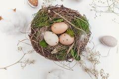 Пасхальное яйцо в гнезде на деревенских деревянных планках Стоковые Изображения