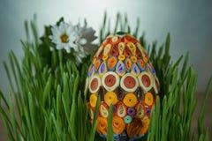 Пасхальное яйцо помещенное между семенозачатками пшеницы зеленого цвета frech и цветками стоковая фотография