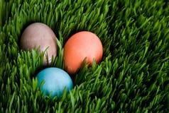 пасхальное яйцо Стоковая Фотография