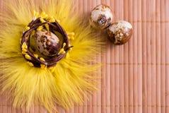 Пасхальные яйца в гнезде на предпосылке цвета деревянной Натюрморт пасхи с цветками, гнездом, пер и яичками Стоковые Фотографии RF