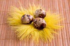 Пасхальные яйца в гнезде на предпосылке цвета деревянной Натюрморт пасхи с цветками, гнездом, пер и яичками Стоковая Фотография RF
