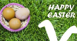 Пасхальные яйца в гнезде на траве с ушами зайчика Стоковые Изображения RF