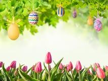 Пасхальные яйца в зеленых ветвях Стоковая Фотография