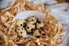 Пасхальные яйца в птице гнездятся на деревенской деревянной предпосылке Весна, пасха или здоровая концепция натуральных продуктов стоковое изображение