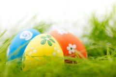 Пасхальные яйца в траве Стоковые Изображения RF