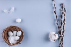 Пасхальные яйца в цветках гнезда и весны на предпосылке праздника Взгляд сверху с космосом экземпляра карточка пасха счастливая Стоковое фото RF