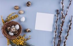 Пасхальные яйца в цветках гнезда и весны на предпосылке праздника Взгляд сверху с космосом экземпляра карточка пасха счастливая Стоковая Фотография