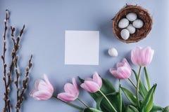 Пасхальные яйца в цветках гнезда и тюльпана на предпосылке весны Взгляд сверху с космосом экземпляра карточка пасха счастливая Стоковые Изображения