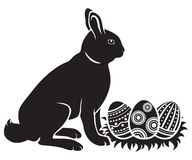 пасхальные яйца зайчика Стоковые Изображения