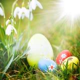 пасхальные яйца засевают snowdrops травой Стоковое Изображение
