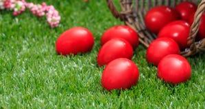 Пасхальные яйца из корзины на зеленой траве, конце вверх по взгляду, крупному плану Стоковое фото RF