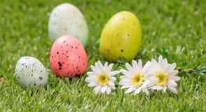 Пасхальные яйца и белые маргаритки на зеленой траве, конце вверх по взгляду Стоковые Изображения RF