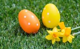 Пасхальные яйца и желтые цветки на зеленой траве, конце вверх по взгляду Стоковая Фотография