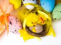 Пасхальные яйца и желтые цыплята на белой предпосылке стоковое фото
