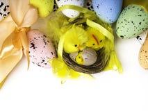 Пасхальные яйца и желтые цыплята на белой предпосылке стоковые изображения