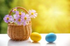 Пасхальные яйца и корзина с цветками Стоковые Фото