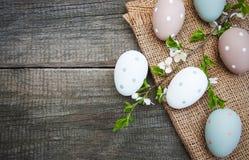 Пасхальные яйца и цветение весны Стоковые Фото