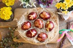 Пасхальные яйца покрашенные с корками лука, с картиной свежих трав Стоковое Изображение