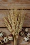 Пасхальные яйца с колосками пшеницы на досках Стоковые Фото