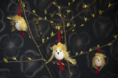 Пасхальные яйца с крылами стороны и желтого цвета цыпленка пера Стоковое фото RF
