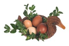 пасхальные яйца утки предпосылки белые стоковое фото rf