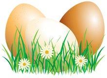 пасхальные яйца Бесплатная Иллюстрация