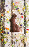 Пасха: Зайчик пасхи шоколада окруженный конфетой Стоковая Фотография