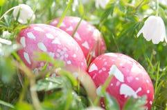 Пасха и весна стоковое изображение