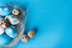 Пасха покрасила яичка в гнезде Стоковое Изображение RF