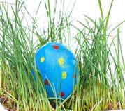 Пасха покрасила яичка на белой предпосылке Стоковое фото RF