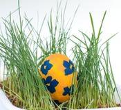 Пасха покрасила яичка на белой предпосылке Стоковая Фотография