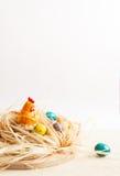 пасха счастливая Цыпленок в гнезде и покрашенных яичках Стоковые Изображения