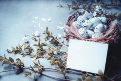 Пасха с карточкой чистого листа бумаги, гнездом с яичками птицы и хворостинами и цветками весны Насмешка вверх для поздравительно Стоковые Изображения