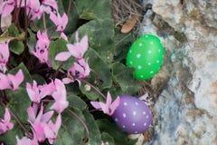 2 пасхального яйца около пука Cyclamens Стоковое Изображение RF