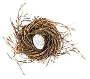 Пасхальное яйцо в гнезде птиц Стоковые Изображения RF