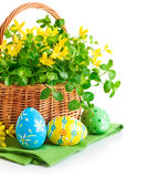 Пасхальные яйца в корзине с цветками весны стоковое изображение rf