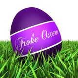 Пасхальное яйцо на траве Стоковые Фотографии RF