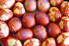 пасхальные яйца бабочек Стоковые Изображения RF