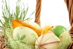 Пасхальные яйца взгляда крупного плана красочные, catkins в корзине Стоковое Изображение
