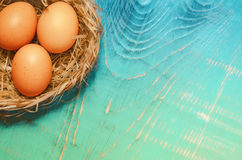 Пасхальные яйца в гнезде на 2-тоне подкрашивали предпосылку Множество космоса для текста Стоковая Фотография