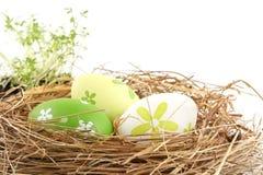 Пасхальные яйца в гнезде при изолированное cuckooflower стоковые фотографии rf