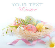 Пасхальные яйца в гнезде с весной цветут Стоковая Фотография