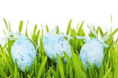 Пасхальные яйца в зеленой траве Стоковое Изображение