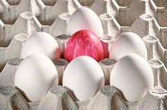 Пасхальные яйца в кассете Стоковое Фото