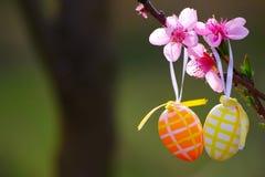 Пасхальные яйца в саде Стоковое Фото