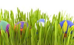 Пасхальные яйца в траве Стоковые Изображения