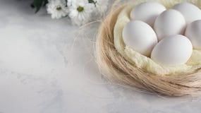 Пасхальные яйца в цветках гнезда и весны белых на белой предпосылке Скопируйте космос для текста Стоковое Изображение RF